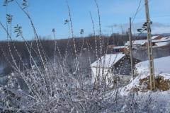 Paisaje nevado (Fotografía de Mª Jesús García)