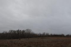 Stratocumulus, llovizna