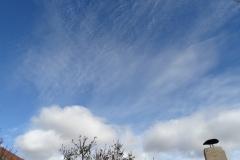 Cirrocumulus stratiformis  + Cumulus humilis en Maire de Castroponce
