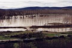 Gran riada del río Órbigo (Fotografía de Mª Jesús garcía)