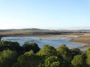 Tierras inundadas en Maire, vistas desde el Teso