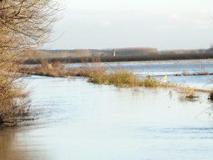 La Vega de Maire inundada, al fondo Fresno de la Polvorosa.
